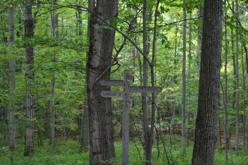 Shelburne farms woods