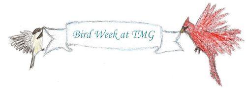 Bird week banner